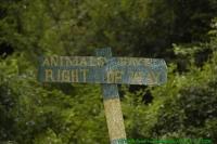 Malawi2009-05-01om17u36m33.jpg