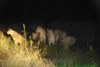 Malawi2009-05-01om20u34m37.jpg
