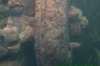 Malawi2009-05-04om14u14m41.jpg