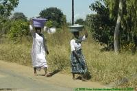 Malawi2009-05-06om11u32m55.jpg