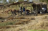 Malawi_2006-11-02_15.59.01_(_DSC5582)_onderweg_naar_RZL.jpg