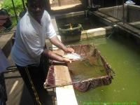 Malawi_2006-11-03_10.24.16_(IMG_0166)_de_voorraad.jpg