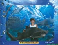 AquariumBarcelona-0001-640480.jpg