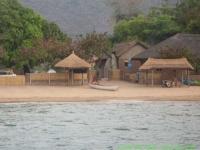 Malawi_2006-11-11_16.48.00_(IMG_0198)_Cape_Maclear_Fat_Monkeys.jpg