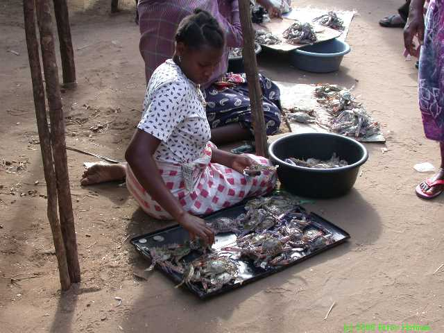 Mozambique 2002(0812).jpg