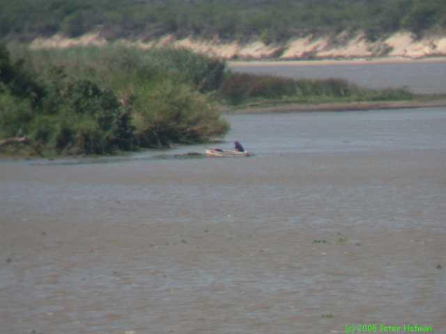 Mozambique 2002(0871).jpg