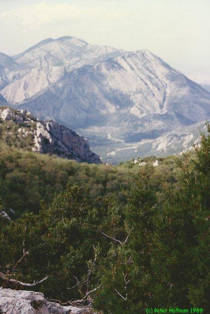 Turkije juni 1989 - foto 031M.jpg