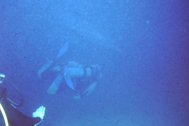 Sinai 1997 ION -053_640X480.jpg
