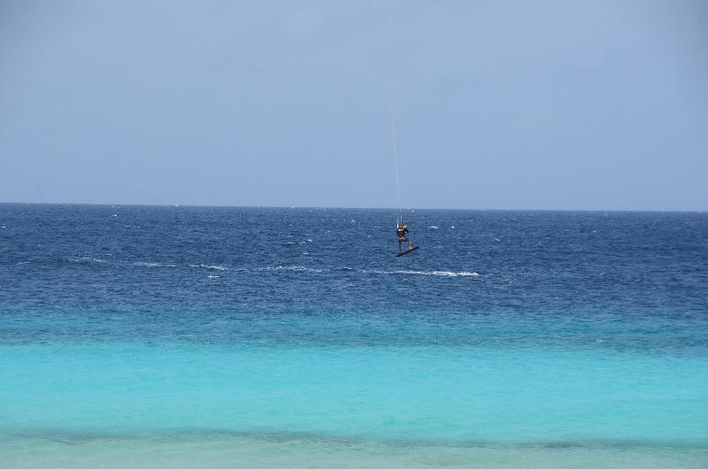Bonaire 2018 05 07 - 17 04 16 (foto 6372).jpg