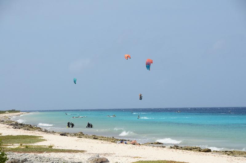 Bonaire 2018 05 07 - 17 04 41 (foto 6374).jpg