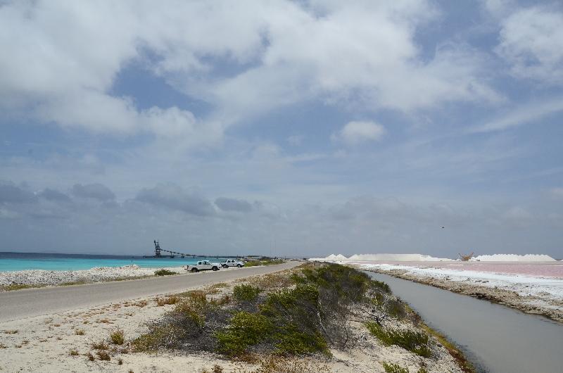 Bonaire 2018 05 07 - 18 09 48 (foto 6396).jpg