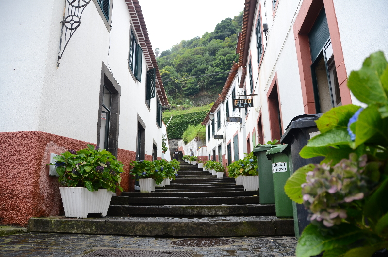 Madeira_20191019_162846.jpg
