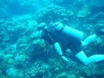 Bonaire 2018 05 05 - 19 02 22 (foto 3539).jpg