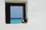 Bonaire 2018 05 07 - 16 58 45 (foto 6370).jpg