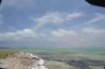 Bonaire 2018 05 07 - 18 05 08 (foto 6385).jpg